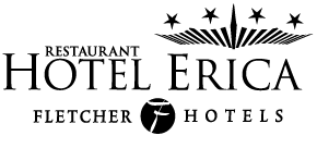 Webdesign Hotel Erica